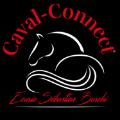 VIP Crossing - profil  Caval Connect